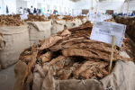 Tobacco prices up 39 percent